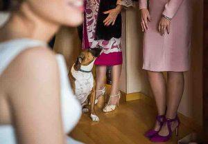 Fotógrafo de bodas en Madrid y Santander.